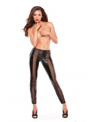 Wet Look Mesh Leggings Kitten-Boxed 16-5602K